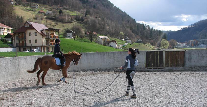 Villa Aina The Horse Riding2