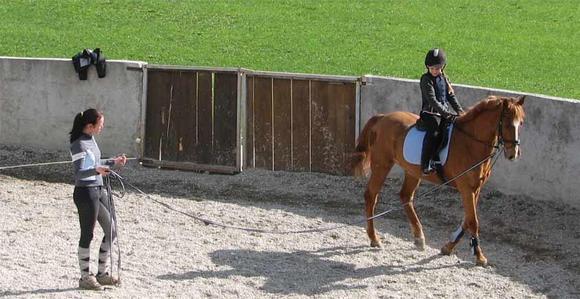 Villa Aina The Horse Riding4